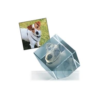 Cubo vetro con foto incisa