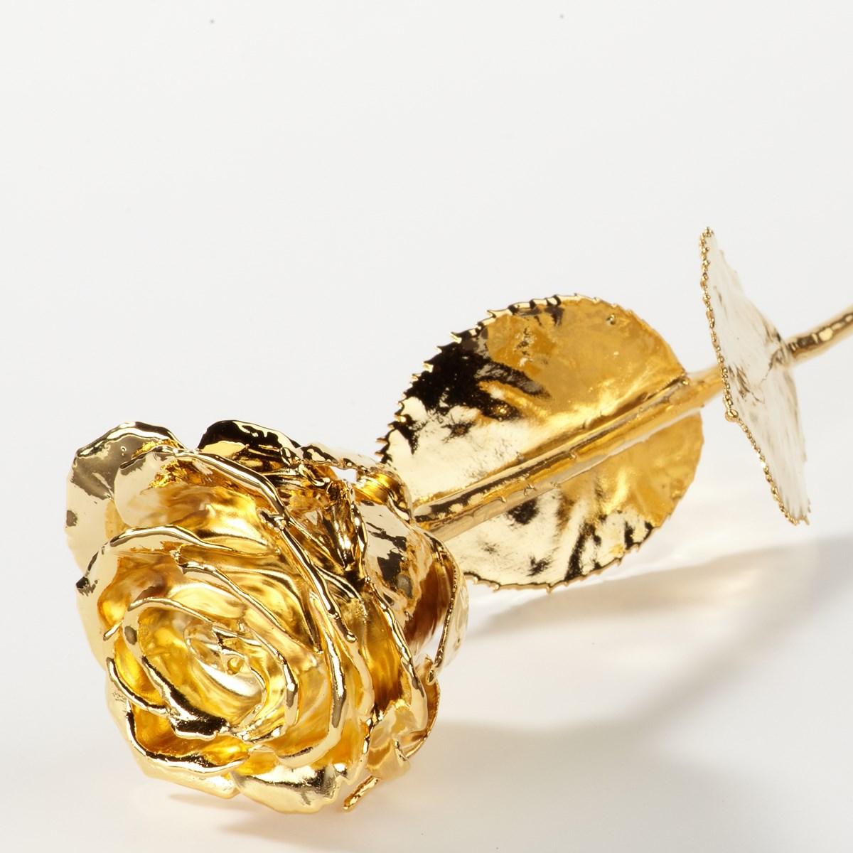 Rosa d'oro