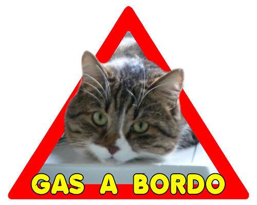 Gatto a bordo adesivo auto personalizzato