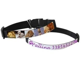 Collare per cani personalizzato